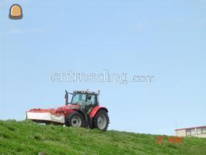 Tractor + schijvenmaaier Massey ferguson met schotelmaaiers