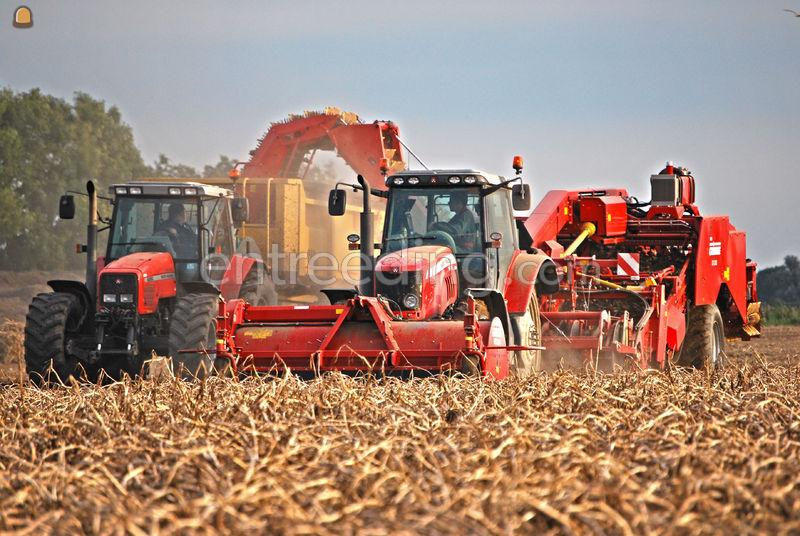 Aardappelrooiers Grimme GV3000