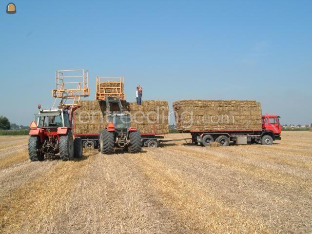 Tractor MF4255 + frontlader