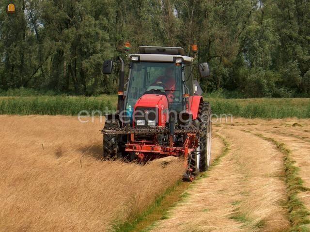 Overige oogstmachines MF 4355 + Busatis messenbalk
