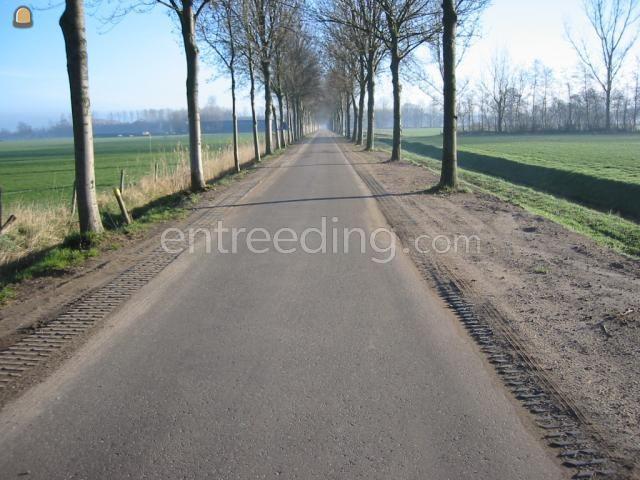 Projecten / werken Bermstabilisatie dmv grasblokken