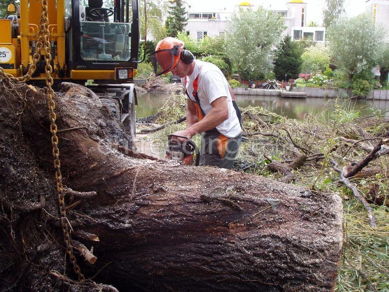 Groenaanleg, onderhoud en omgevingswerken kappen van bomen