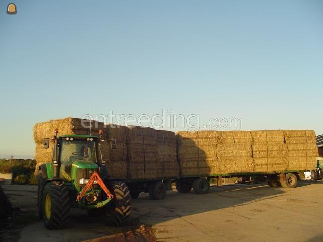 Tractor + plateauwagen John Deere met vracht stro