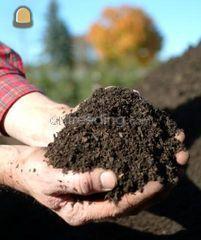 (blad) compost Omgeving Hilversum