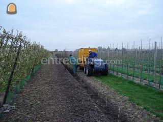 trekker+schelpen/compostw... Omgeving Hoorn