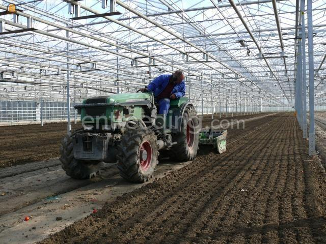 Tractor + rotorkopeg Fendt 209 Vab