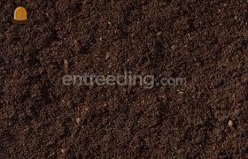 Compost Omgeving Voorne-Putten