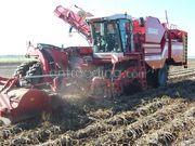 Aardappelrooiers Grimme Varitron 270