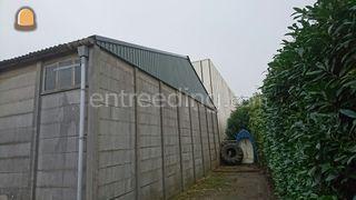 Schurenbouw e.d. Omgeving Goeree-Overflakkee