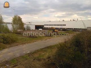 verwijderen van bomen en ... Omgeving Herentals, Turnhout