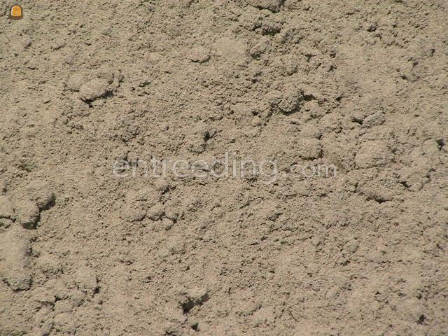 Zand Voegzand