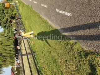 Met bosmaaier Omgeving Rotterdam