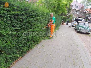 Hovenier voor onderhoud  Omgeving Rotterdam