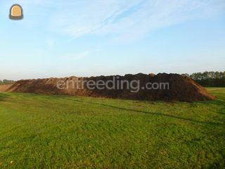 Zwarte grond Omgeving Breda