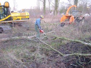 Snoeiwerk Omgeving Alphen a/d Rijn