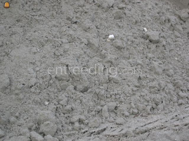 Zand Uit voorraad leverbaar