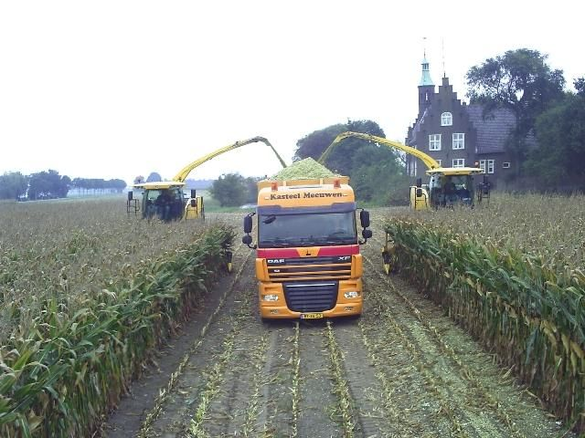 2 New Holland FR 9060 hakselaars voor Kasteel Meeuwen (video)